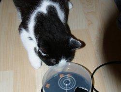 Fummel-CD-Box